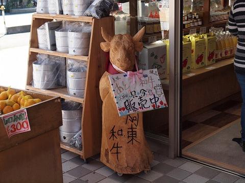 Michinoeki_101103_016