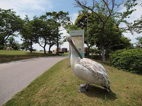 Tokiwapark_1000529_071