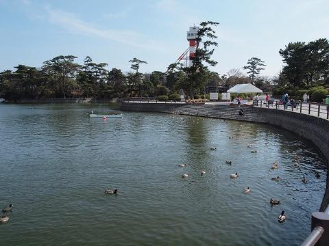 Tokiwapark_110327_011